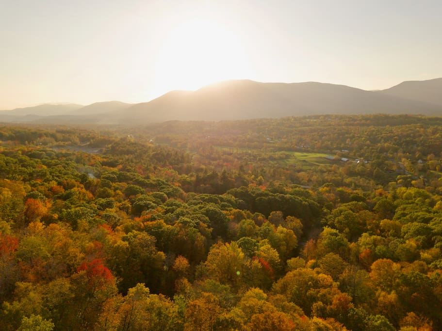Drone shot from above the house during peak week
