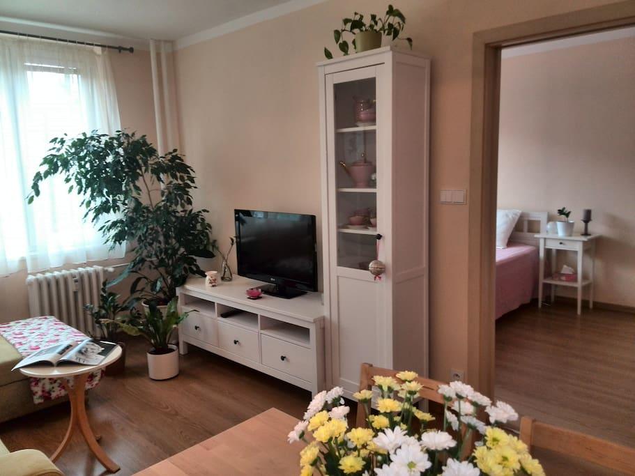 Průhled z obývací místnosti do ložnice