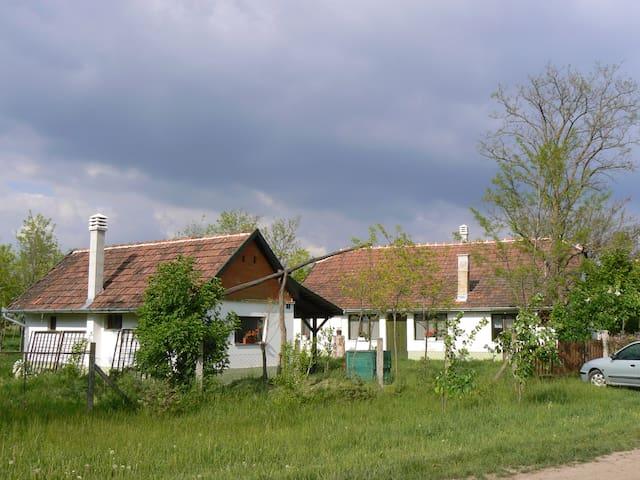 Salaš Ludas 07 - Šupljak - Hus