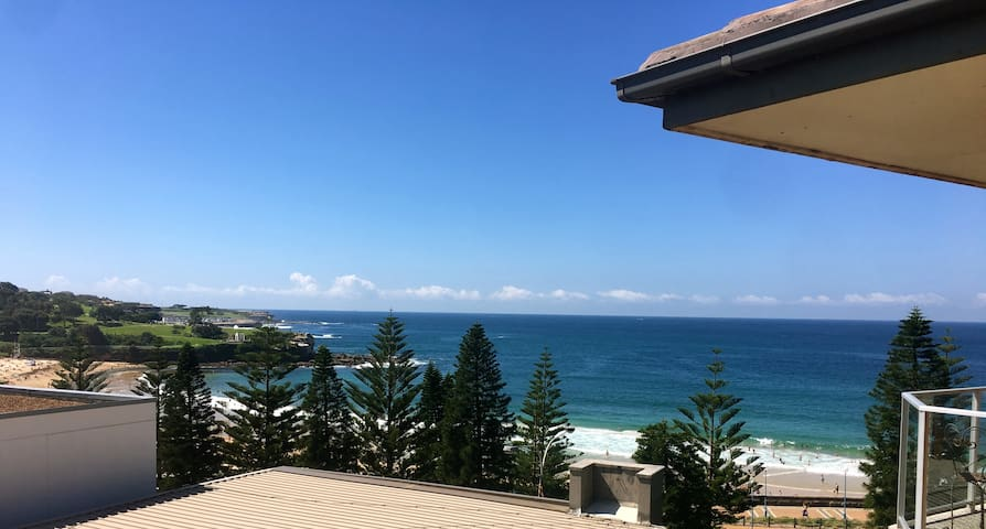 Absolute beachfront in Coogee! - Coogee - Apartment