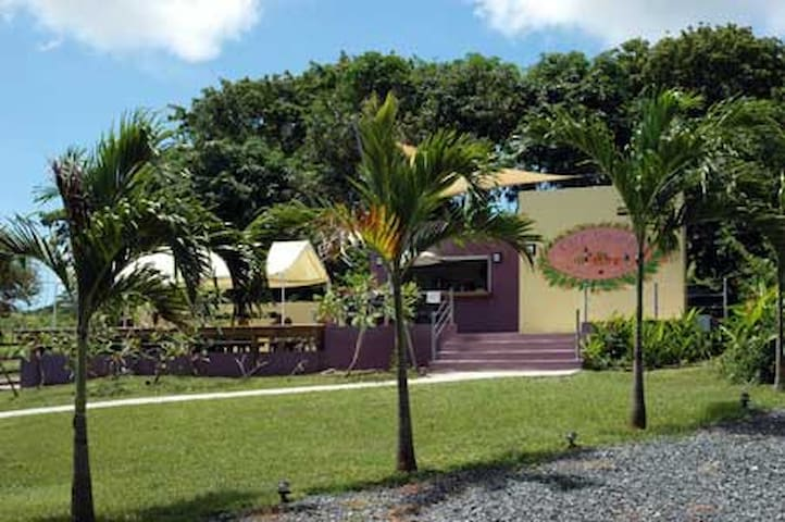 Bio Bay Overnight Stay - Vieques - Appartamento