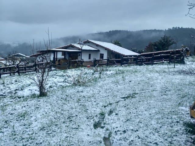 Invierno blanco