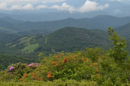 Green Earth Mountain Retreat in the high country - Roan Mountain - Mökki
