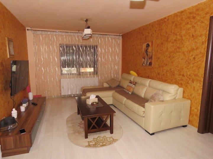 Geanina Apartments - Craiova