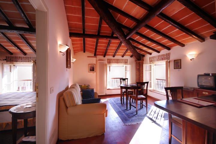 Suite matrimoniale di charme - Castelvetro di Modena - Penzion (B&B)