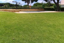 Pool & garden areas
