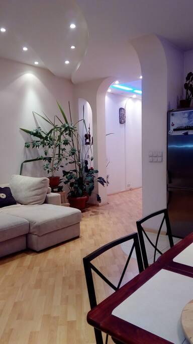 Вид от окна на часть комнаты-студии.