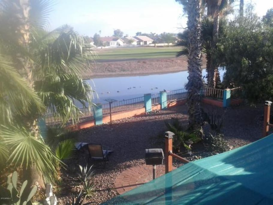 View of seasonal pond, from master bedroom balcony