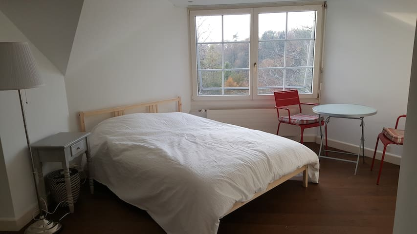 Large bedroom near Lausanne with nice view on lake - Belmont-sur-Lausanne - House
