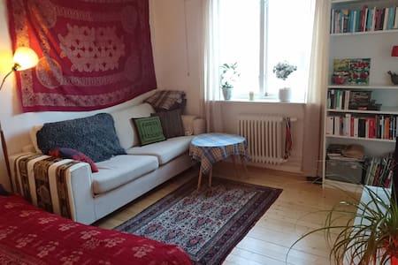 Mysigt boende på Gamla Masthugget - Göteborg
