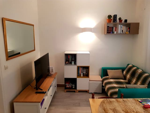 Bel appartement parisien - BASTILLE