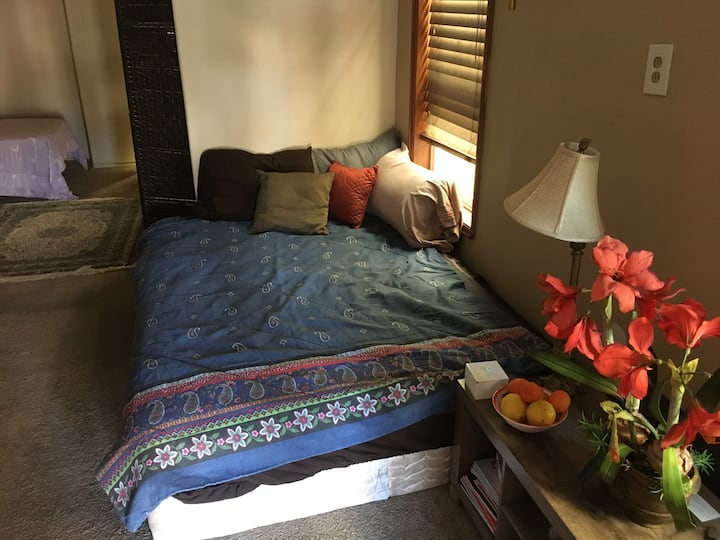 Twin bed in shared living room