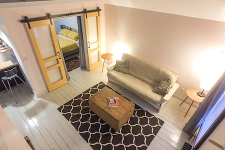 Sunny One Bedroom Walk To Rondout - Daire