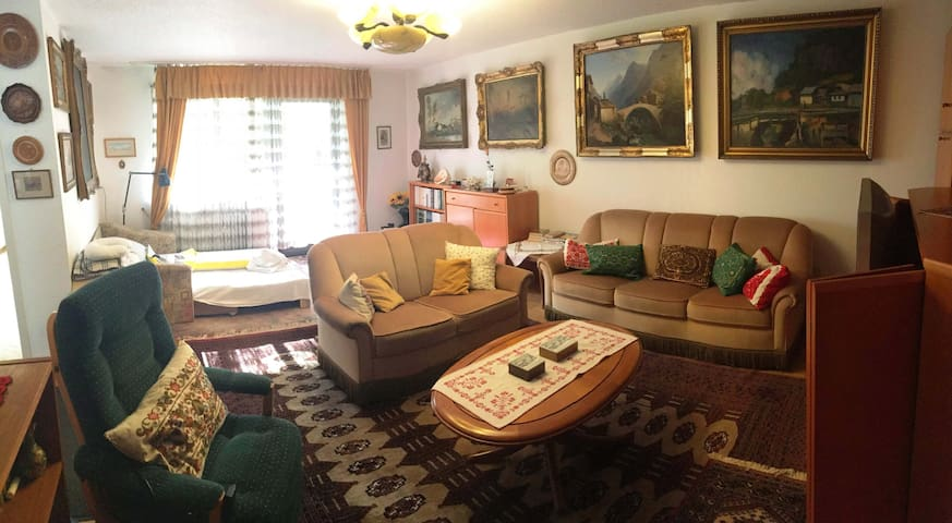 Idyllic home away from home - flat for up to 4 pax - Waldshut-Tiengen