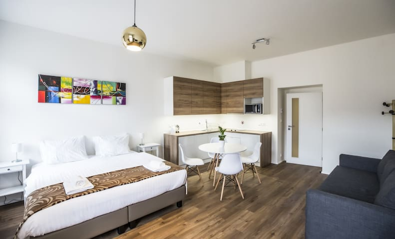 Prague City Stay Jagellonská: Our classic studio apartment, with new modern furniture and all amenities.