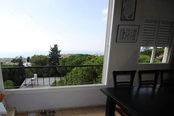 Beautiful, big apt1 with sea view-Apartment Haifa
