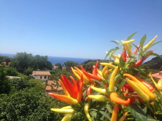 Stanzette Mare&monti