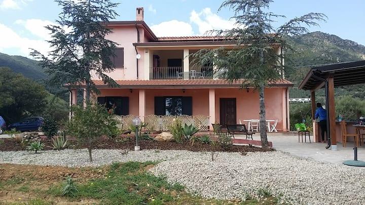 Comfortable apartment with veranda and garden.
