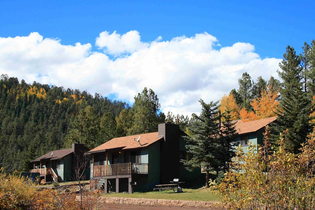 Greer village 2 br cabin 2 pond fully equipped cabins for Cabins near greer az