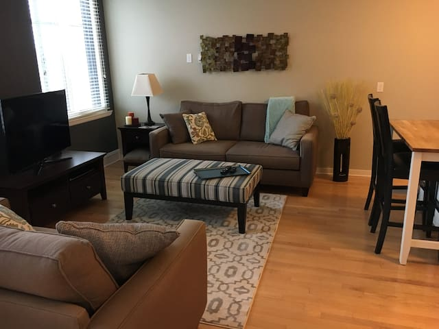 Cozy and Clean Downtown Apartment