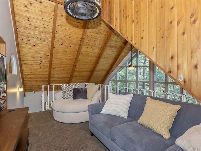 Loft Entrance to master bedroom