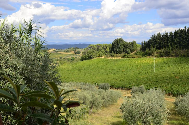 Fantastic typical Tuscan apartment in Chianti - Barberino Val D'elsa - Apartament