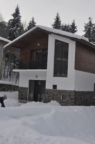 Rest house in bakuriani - Bakuriani - House