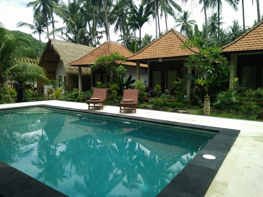 Crystal bay bungalow with pool view nusa penida bungalows for rent in nusapenida bali indonesia for Bungalow on rent in khandala with swimming pool