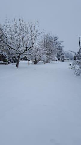 Allée sous la neige Janvier 2019