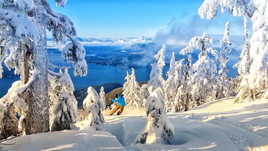 Beautiful, Cozy Horseshoe Bay/Cypress Ski suite!