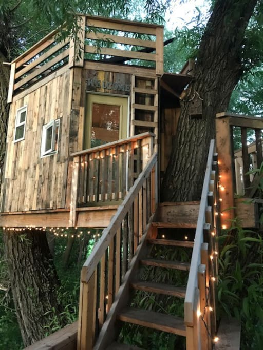 Tree house with stairs, deck above with hammock .
