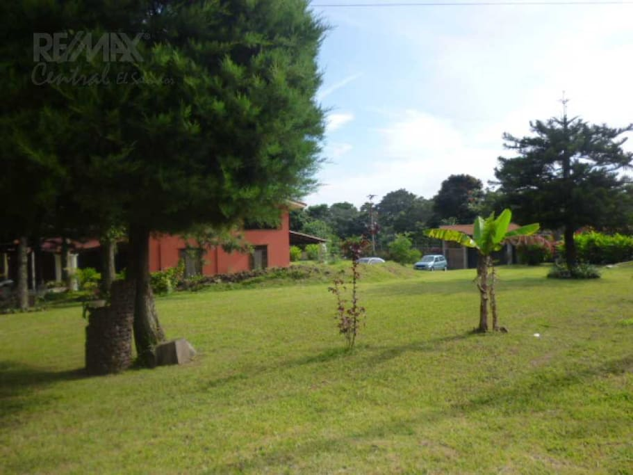 gardens with trees surrounding the whole property