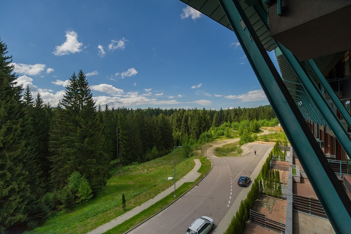 Loft apartment in Silver Mountain Poiana Brasov