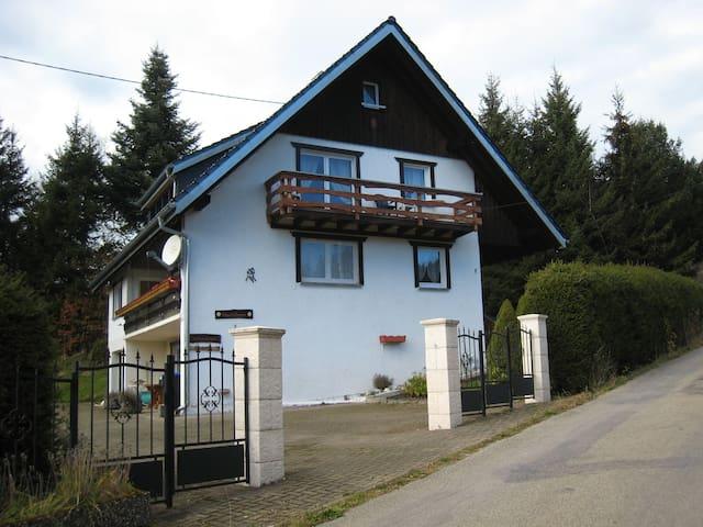 Direkt am Schluchsee - Schluchsee - Apartment
