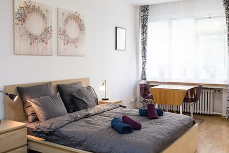 Well located apartment at Zizkov/Vinohrady Area - Praha