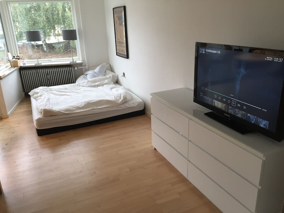 Livingroom/Bedroom with TV available for your use