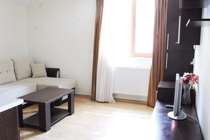 Lovely New Apartment - Sinaia - Flat