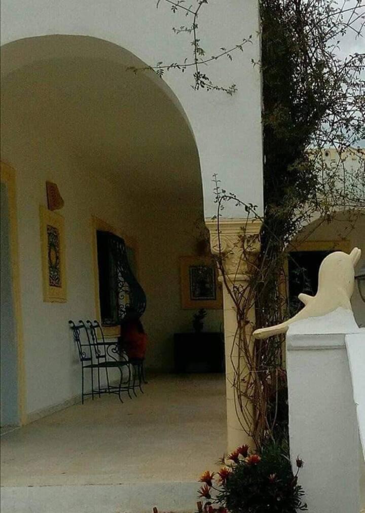 Magnifique villa jerbienne