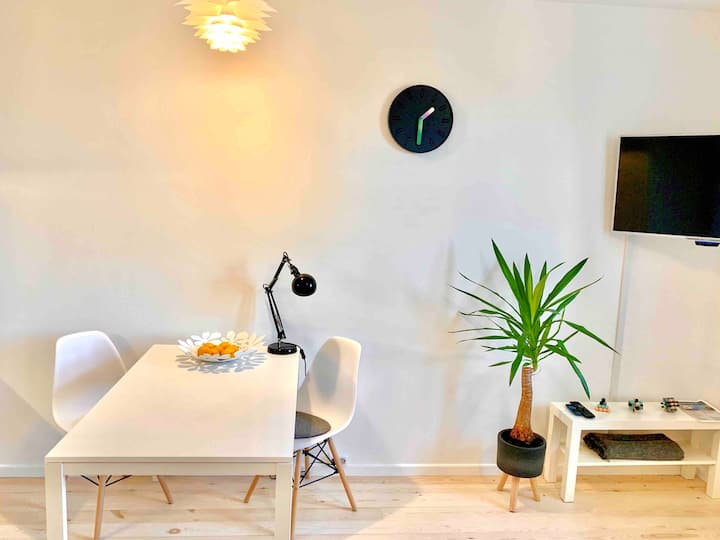 Cosy and bright studio in Riga | free parking