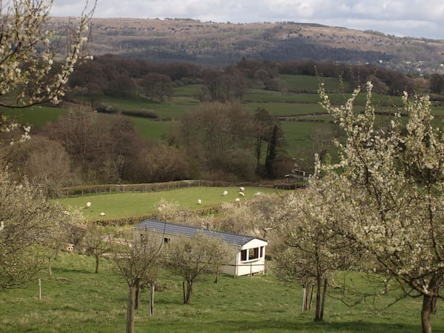 Idyllic lake district farm retreat caravan. - Cumbria - Kulübe