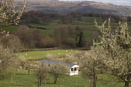 Idyllic lake district farm retreat caravan. - Cumbria - Blockhütte