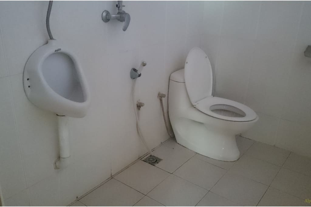Clean Large Toilets