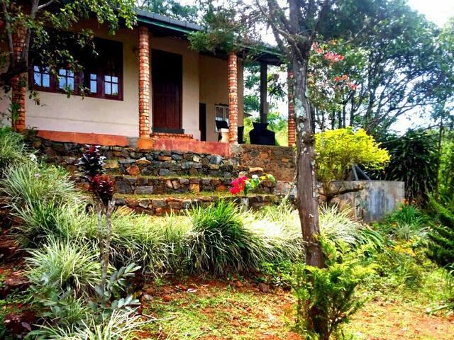 Kandy Holiday Home