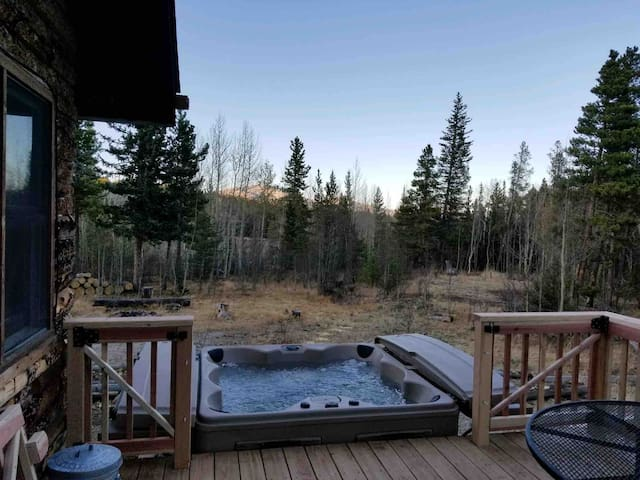 Amazing Cabin Hot tub Fireplace