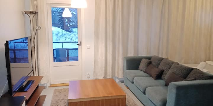 A cozy, modern, homely apartment