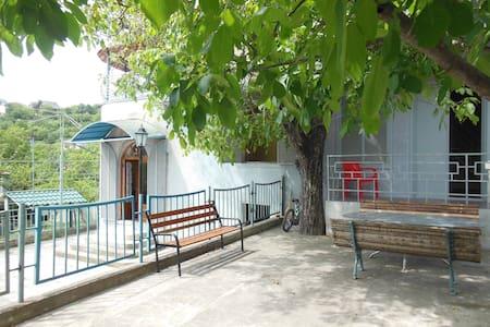 Sunny, clean house in surami, მყუდრო სახლი სურამში - Surami