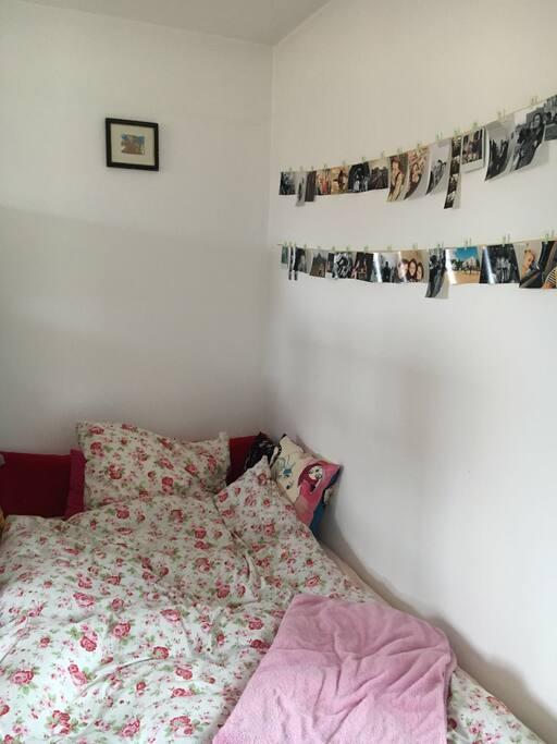 h bsches zimmer in perfekter lage in regensburg wohnungen zur miete in regensburg bayern. Black Bedroom Furniture Sets. Home Design Ideas