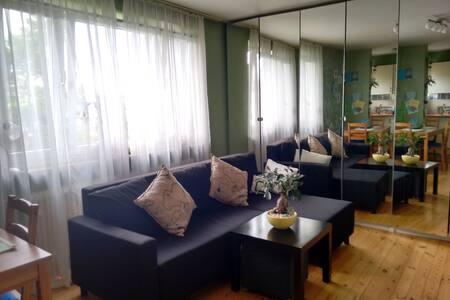 Accogliente appartamento Monaco Bav - München - Wohnung