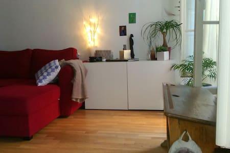 appartement 50m2 vieux corbeil - Corbeil-Essonnes