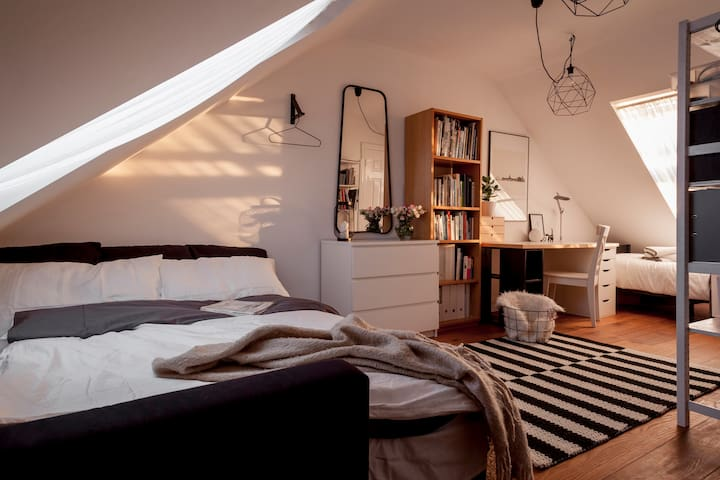Contemporary loft bedroom/ensuite bathroom - Dublin - House
